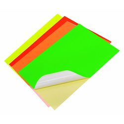 Fluorescent Mixed Colour Sticker